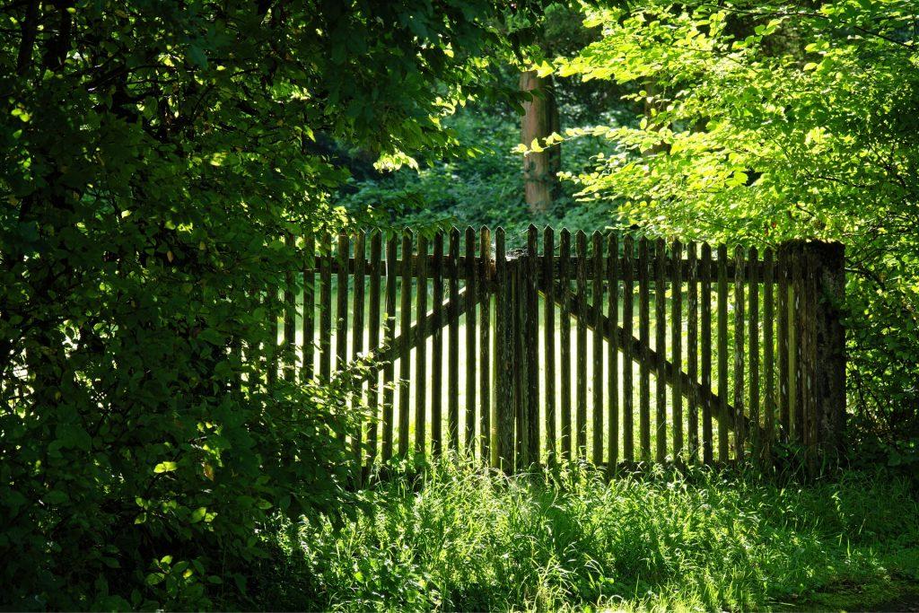 wood-fence-1610150_1920